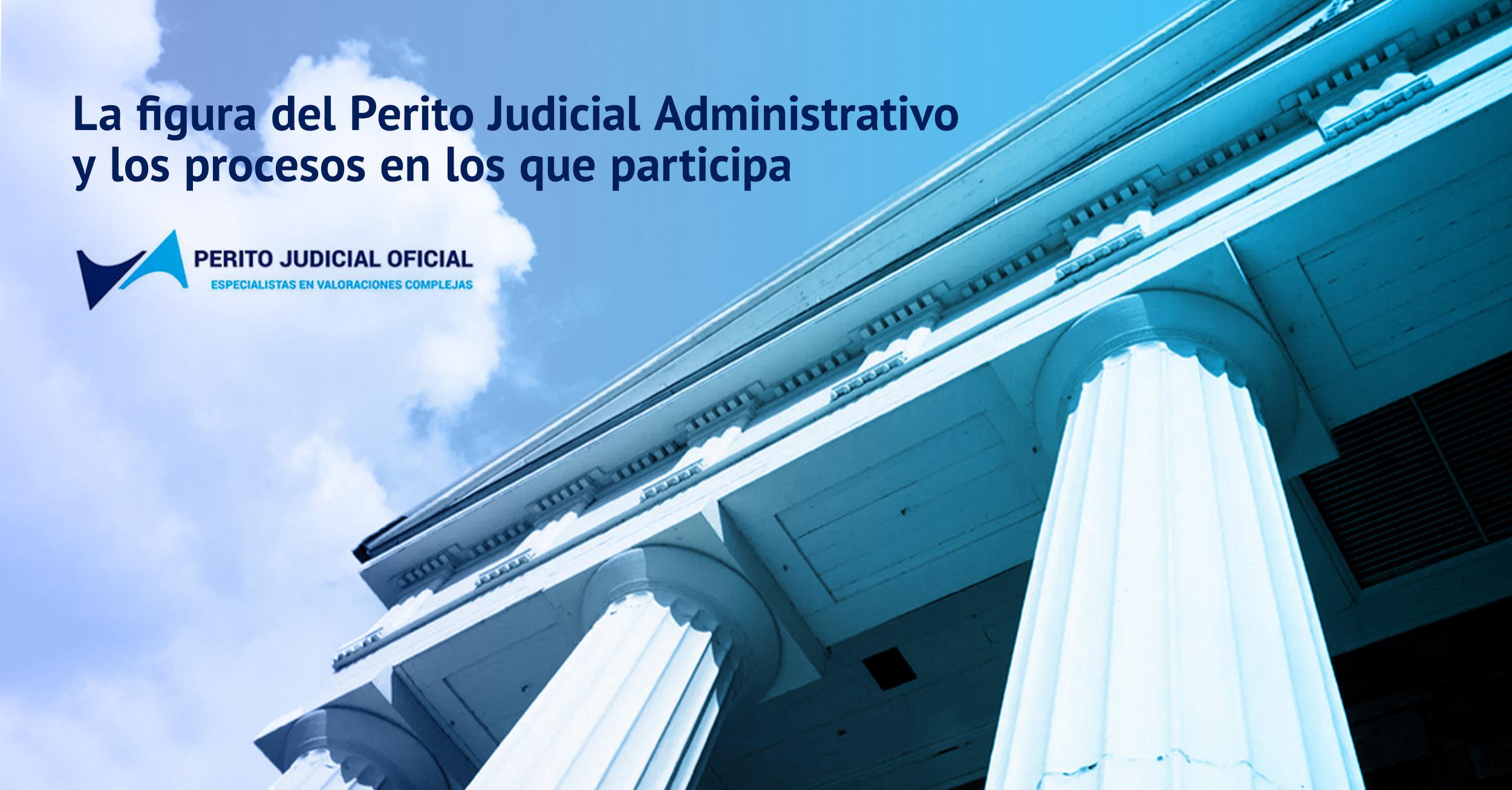 La figura del Perito Judicial Administrativo - Perito Judicial Oficial
