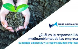 El peritaje ambiental y la responsabilidad empresarial - Perito Judicial Oficial - Peritos España - Madrid